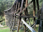 Feb 28 - Historic trestle railway bridge at Noojee