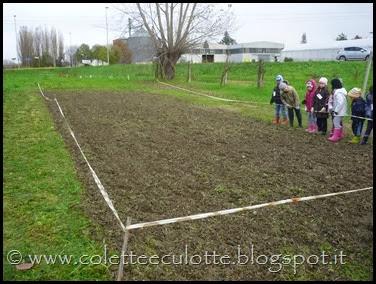 I bambini delle classi 1° della Scuola Primaria di Padulle piantano il grano! (1)