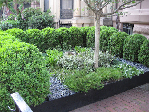 Serene Ribbon Garden on Commonwealth Avenue