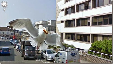 funny-street-view-001