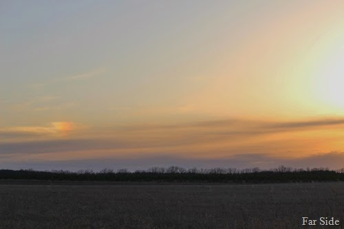 Sundogs at sunset