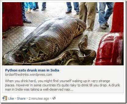 python-eats-drunk-man