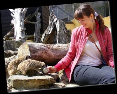 Serena feeding Meerkats DSCF4127