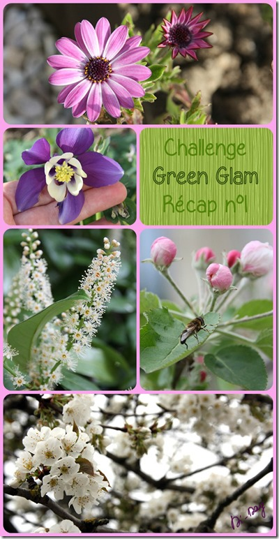 Green Glam 1-5 Di-Day Collage