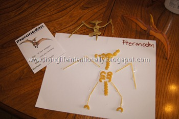 Pterodon Pasta dinosaur skeleton Craft for Preschoolers