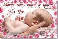 Protectores de Pantalla para Mamá 2012 - 2013