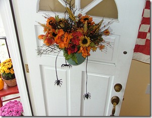 front door spiders