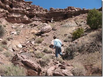 2012-04-15 Petrified Wood, Fry Canyon, UT (65)