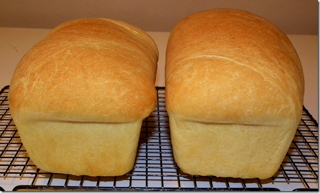 TWD White Loaves