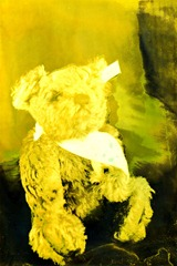 Split-Toned-Prints---Bears-1-J