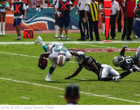 'Dolphins vs. Raiders' photo (c) 2012, June Rivera - license: http://creativecommons.org/licenses/by-sa/2.0/