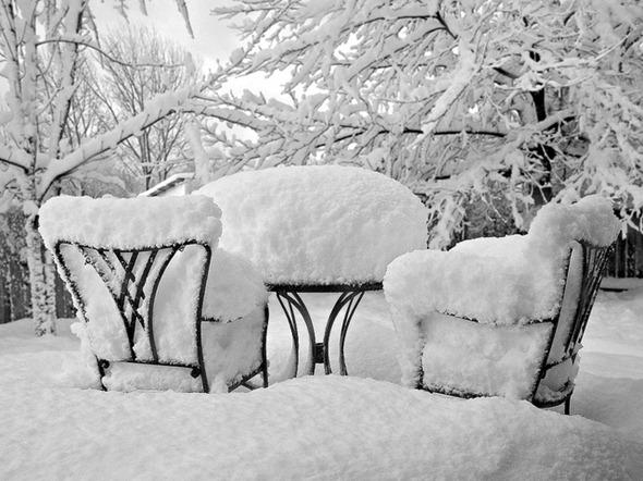winter 22