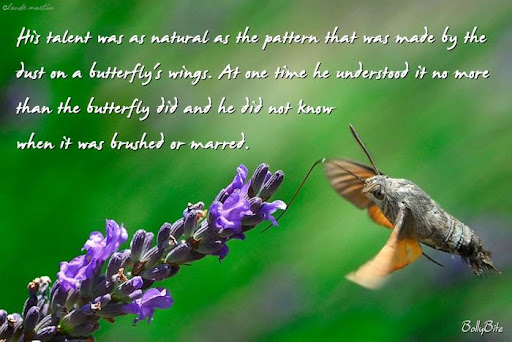 wOnderful Butterfly quOtes
