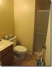 14 downstairs bathroom