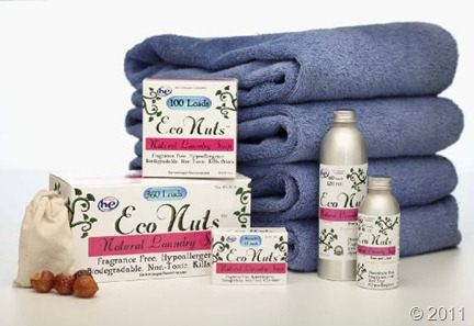 Eco_Nuts_Laundrygroup1_Soap_Nuts_jpg_w560h377