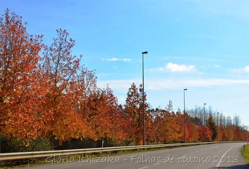 Glória Ishizaka - Folhas de Outono 10