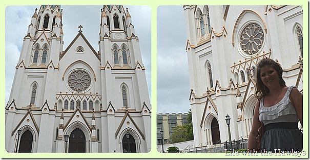 Savannah 4