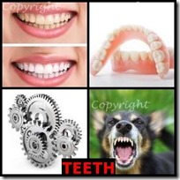 TEETH- 4 Pics 1 Word Answers 3 Letters