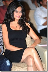Kriti Kharbanda Hot Photos in Black Dress at Ongole Gitta Audio Release Function