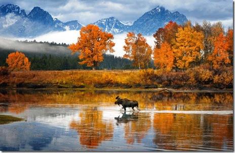 autumn-colors-fall-008