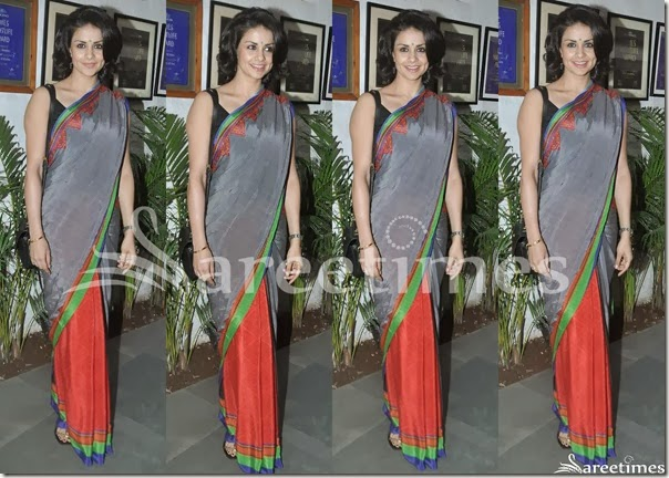 Gul_Panag_Half_and_Half_Saree