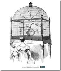 aviaryfordrawingroom