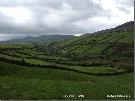 Ireland2013 709