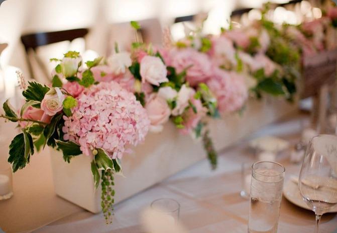 167029_497673951805_370258671805_6498429_5801681_n  fleursfrance.wordpress fleurs de france