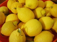 limoni 3