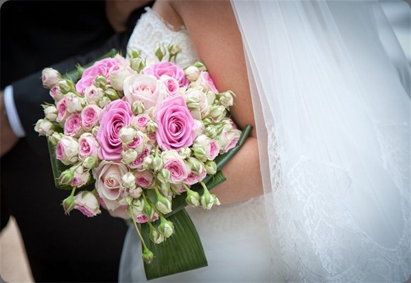 750_500_csupload_21322518 francis flowers
