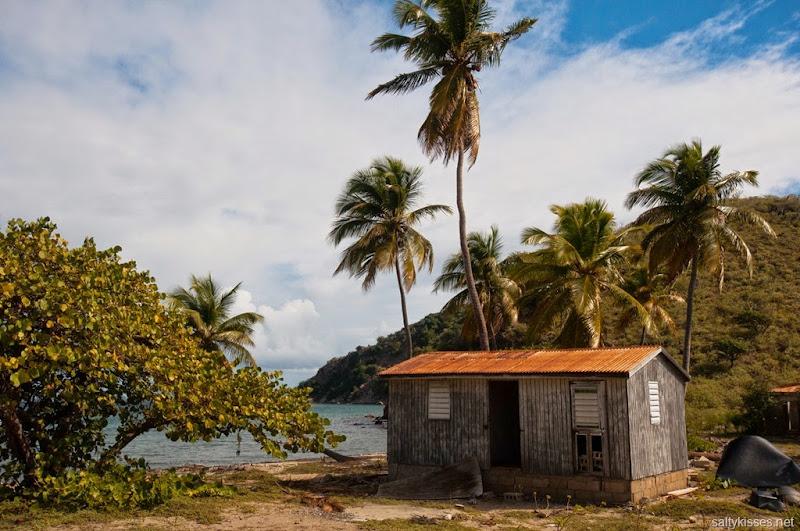 salt island