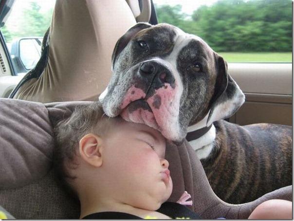 Crianças e animais (4)