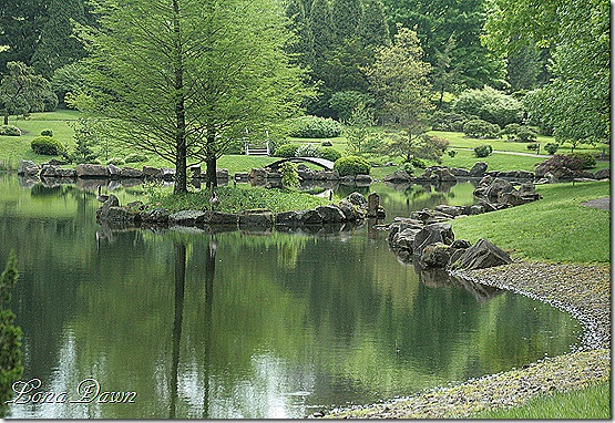 DA_JapaneseGarden_Lake3