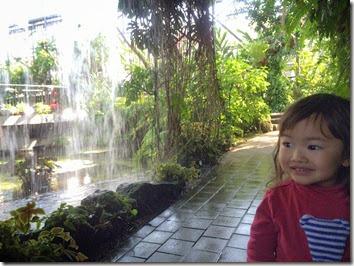 botanical gardens (5)
