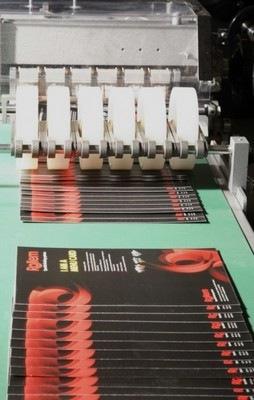 Rollem PhotoSlit shingling conveyor