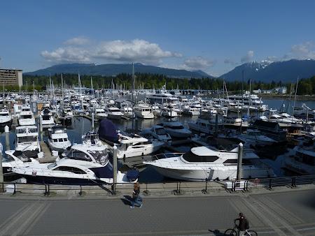 Imagini Vancouver: portul de yahturi