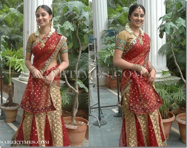 Bhanu_Sri_Designer_Half_Saree