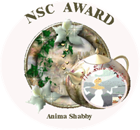 NSC Award 2 Animashabby