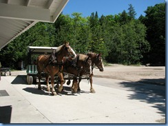 3338 Michigan Mackinac Island - Carriage Tours - time to switch to three-horse hitch carriage for second part of tour