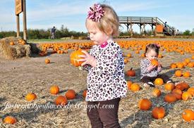 10-29-12_Pumpkin-Patch11