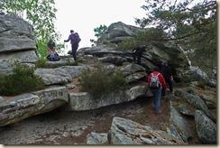 Nemours roches feuilletées2