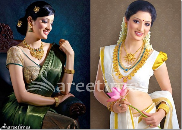 Richa_Panai_Designer_Saree_Blouse