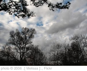 'November Sky' photo (c) 2006, .:[ Melissa ]:. - license: http://creativecommons.org/licenses/by/2.0/