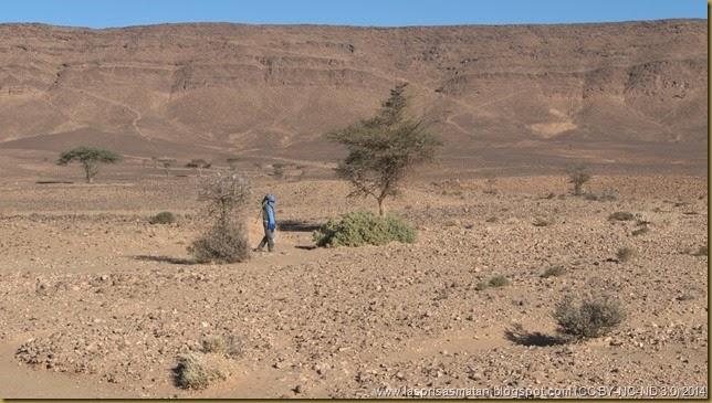 Desierto-183