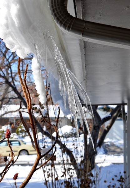 2012-02-05 icicles 1.jpg