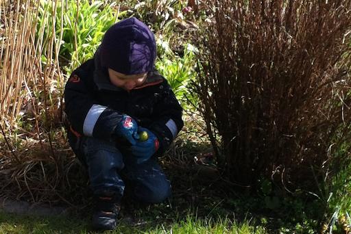 Egg hunt 2012