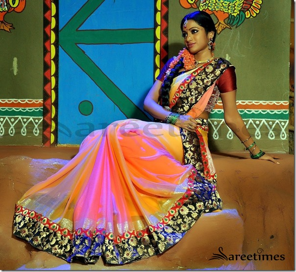 Udhaya_Bhanu_Dual_Color_Saree (2)