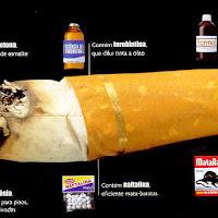 cigarr1.jpg