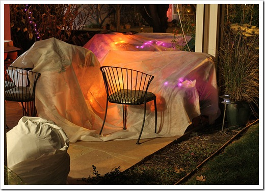120116_frost_blankets_night3