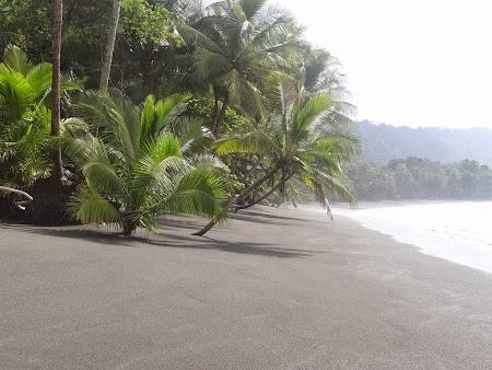 25. Plaja Costa Rica.JPG